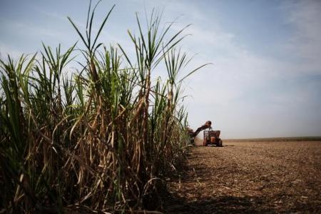 JOB Economia - Radar-Açúcar e Alcool, Monitramento Semanal dos